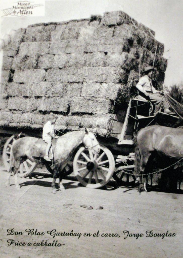 Alfalfa uno de los productos mas importantes a comienzos de siglo XX